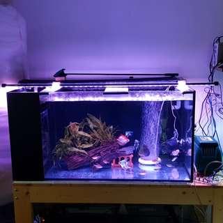 SUPER SALES!!! 1 tube BRIGHTEN the whole tank !!! Fish tank led light, T4 led submersible Using Latest Led Bulb 5730 model Led Bulb c/w 1 month warranty!!! BRAND NEW!!!
