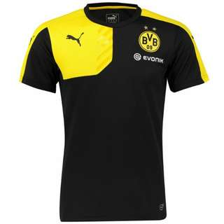Dortmund Training Kit