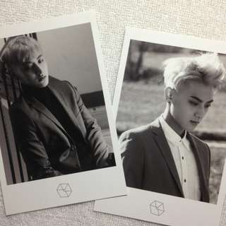 FREE 📦 ZTao Official Photocard
