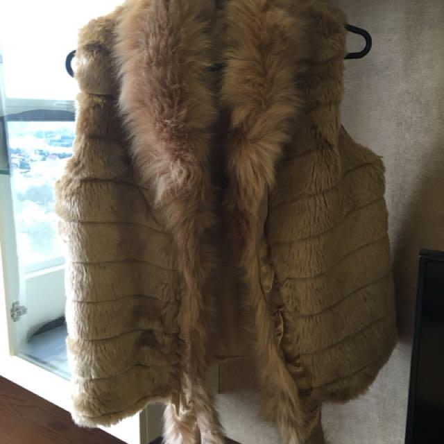 Fury vest