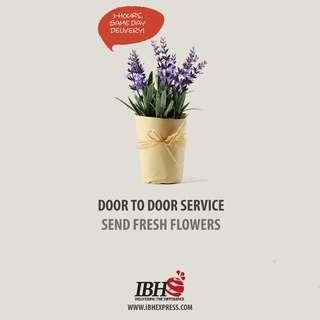 [Flower] Courier Service Booking - Door To Door Service