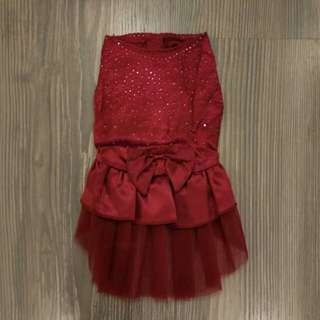 🆕 Pet Dress / Apparel