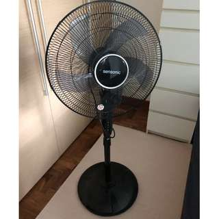 "18"" standing Fan with timer switch"