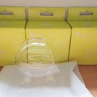 Aquapro Plant Glass Pot