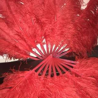 """BURLESQUE PAIR SINGLE LAYER RED OSTRICH FEATHER FANS 41"""""""