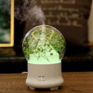 永生花 香薰機 放濕淨化機 夜燈(綠色滿天星)-現貨最後一個