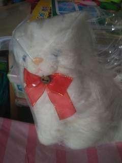 Boneka cat