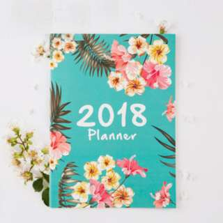 ✔️STOCK - 2018 FLORAL TIFFANY BLUE SCHEDULE DAILY MONTHLY TO DO LIST TRACKER DAY PLANNER