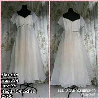 (Reprice)Plus size gown