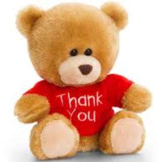 Pippin the Bear and Friends: 14 cm THANK YOU in Red Shirt Plush (16868)
