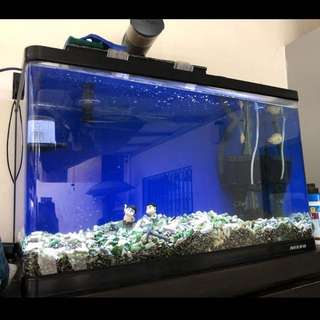 Fish tank with light, pump and filter for sale