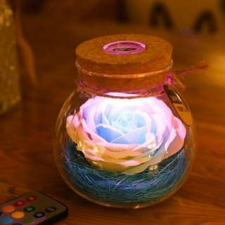 Valentines Day Idea - Rose Flower Wishing Bottle13 Colorful Lights