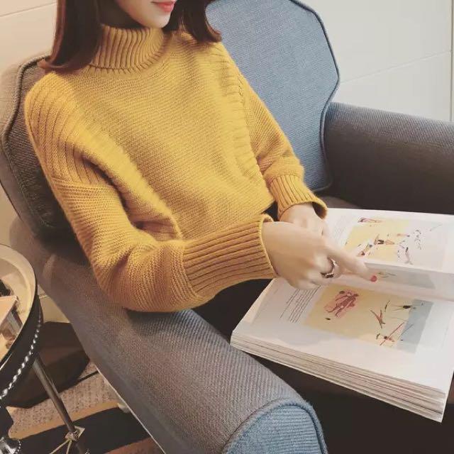 Megan Turtle Neck Sweater