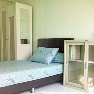Common Room For Rent in woodlands drive 16