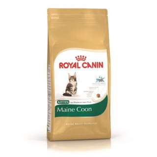 ROYAL CANIN- Maine Coon (4Kg)
