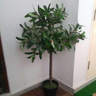 Artificial Plant / Tree / Indoor Tree