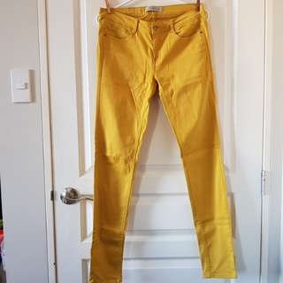 Zara Trafaluc Skinny Pants in Mustard Yellow