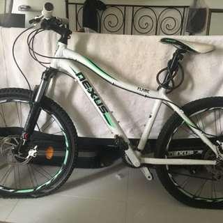 Nexus Flame 24speed mountain bicycle