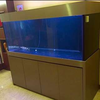 6ft X 2.5 X 2.5 12mm Fish Tank for Sale