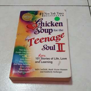 Chicken Soup for the Teenager Soul  2