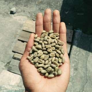 Gayo Arabica Peaberry (Green Bean)