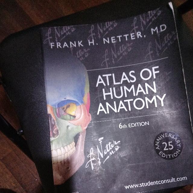 Atlas Human Anatomy Frank H Netter Md Textbooks On Carousell