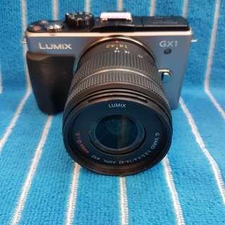 Panasonic Lumix GX1 14-42