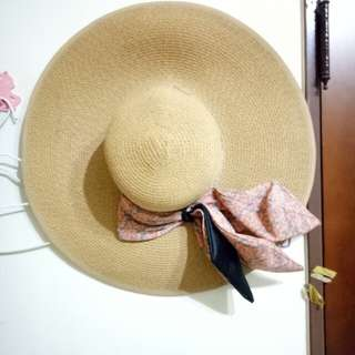 大圓盤草帽