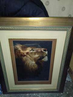 🚚 代購獅子圖話