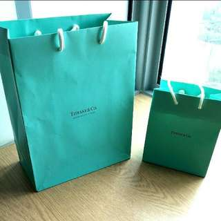 Tiffany & and Co Paper Bag
