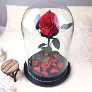 Premium Preserved Roses In Glass Dome