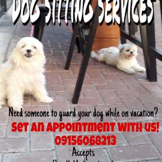 Dog sitting services