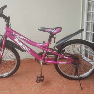 20 Inch Kids Bicycle