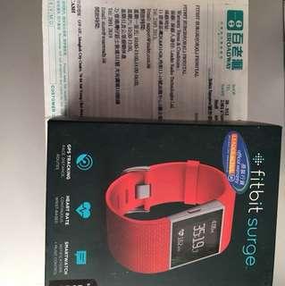 Fitbit Surge Large size