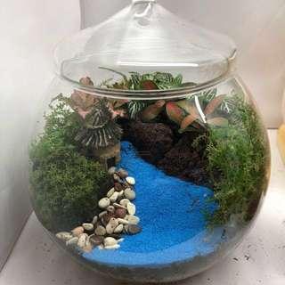 Countryside Terrarium (choice of miniature)