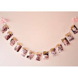 Pink and Gold Glitter 12 month Photo Banner