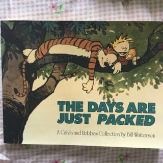 Calvin & Hobbes Collectible Comic - The Days are just packed