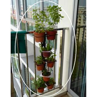 Railing Verti-Rack for small round flower pots - Layout B Dark Brown/White (without pots)