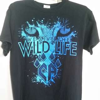 Cheer Athletics Wildcats shirt