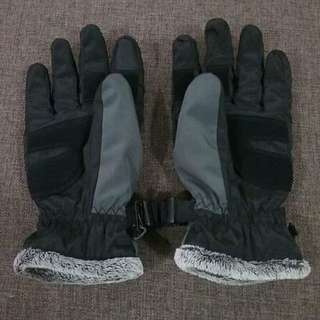 Winter gloves (large)