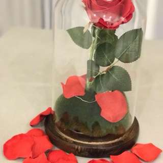 Beauty and the beast enchanted rose lamp