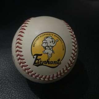 兄弟象 簽名棒球