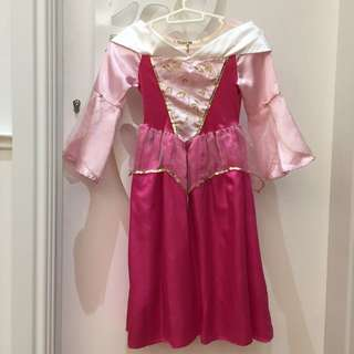 Disneyland Aurora Dress