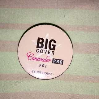 Big Concealer Pro