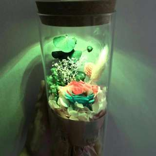Cheapest affordable Roses bouquet led light in a jar
