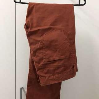 Uniqlo Brown Straightcut Pants