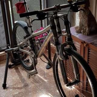 Cyclops Indoor Trainer + Echo Mountain Bike