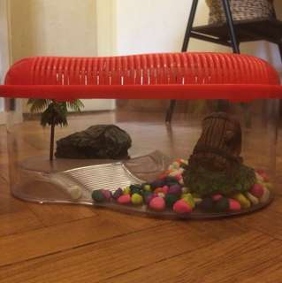 Turtle cage with pebbles and decorations