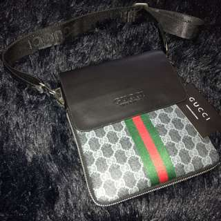 Gucci bag (brown) (black)