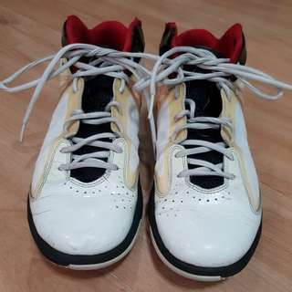 Team Jordan Basketball shoes
